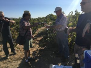 Marians Vineyard with Bruce Fry, Stuart Spencer, and Randy Caparoso