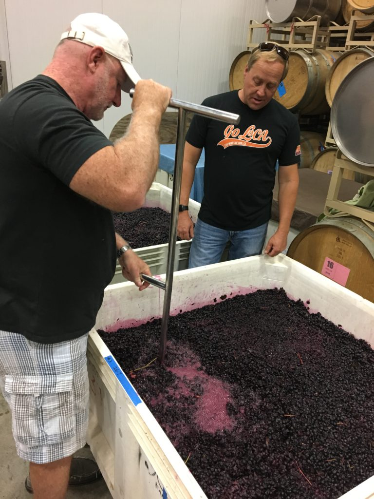 Punching the cap at Holdener Vineyards Winery